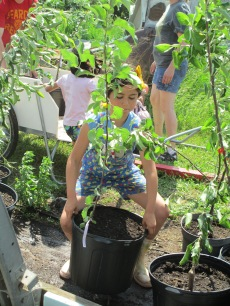 Leticia working on trees