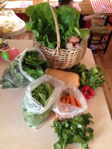 1/2 share of the CSA harvest