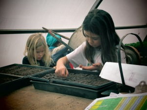 girls dropping seeds into blocks
