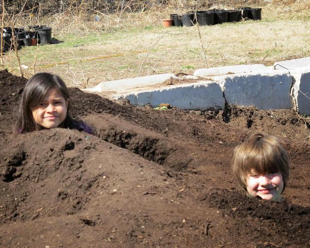 heads n compost