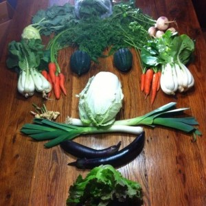 winter csa share